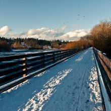 Lochside Trail (Victoria, BC)